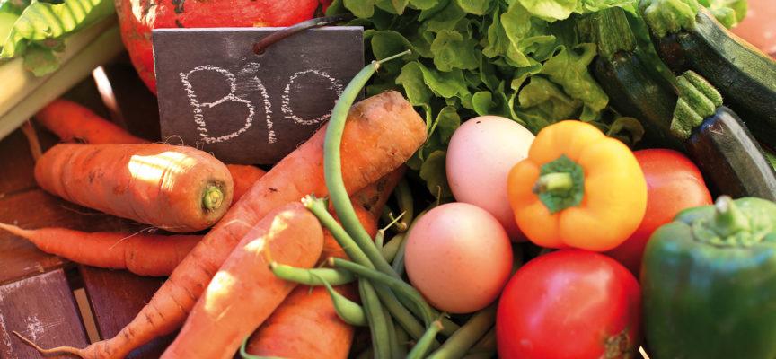 Il Foro Boario fa 10! Festa per i 10 anni del mercato contadino