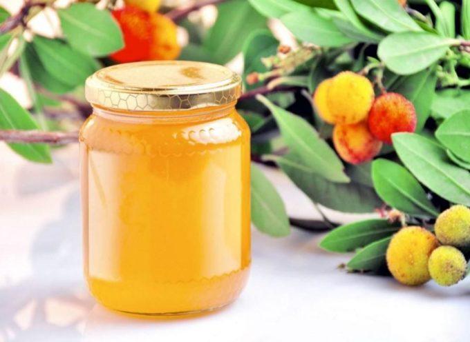 Il miele di corbezzolo può sconfiggere le cellule tumorali del colon