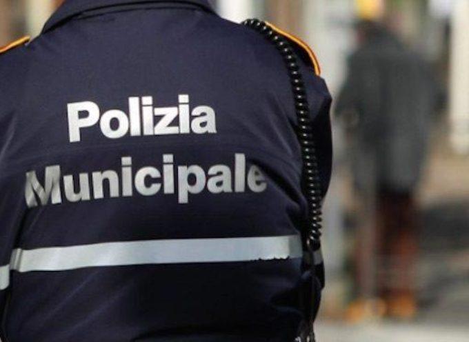 lucca – Polizia Municipale e controllo di vicinato: fermato e denunciato cittadino straniero irregolare