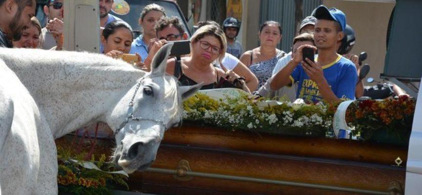 Cavallo dà l'ultimo saluto al suo migliore amico al suo funerale