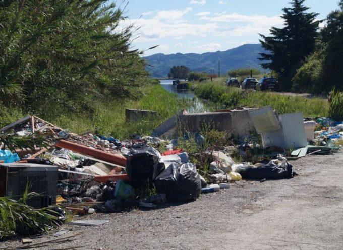 Bomba ecologica sulle sponde del Massaciuccoli, Marchetti (FI)