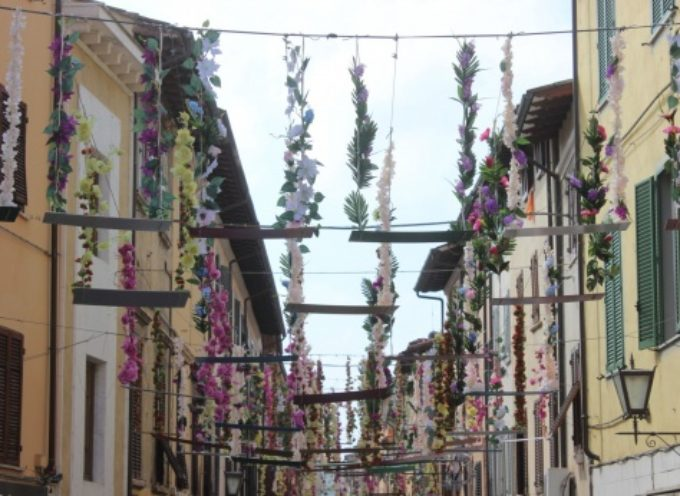 la strada delle altalene volanti a Pietrasanta