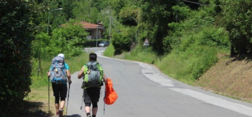 """Francigena: """"Mille e una notte"""" da record (650 iscritti), camminata ludico-motoria sotto fa il pieno"""