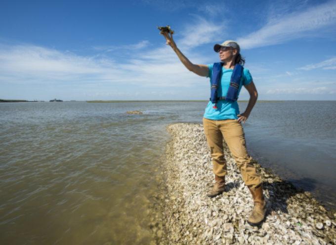 Mary Kay Inc. stringe una collaborazione con l'ente per la salvaguardia della natura The Nature Conservancy per promuovere la pesca sostenibile nel Golfo del Messico