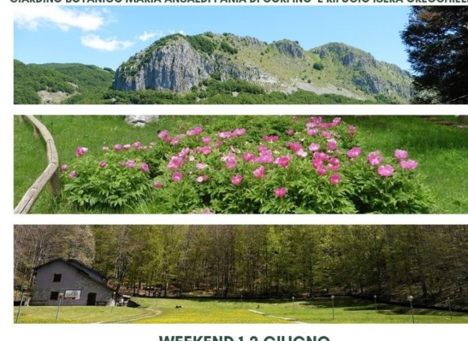 "Giardino Botanico ""Maria Ansaldi"" Pania di Corfino: Un weekend in Appennino tra visite guidate, trekking e relax in rifugio"