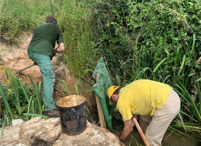 Volontari e migranti puliscono le oasi di Bottaccio, Tanali e Gherardesca
