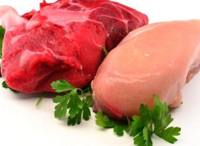 Carne bianca o rossa, stesso effetto nocivo sul livello di colesterolo. Nuovamente nel mirino degli scienziati tutta la carne