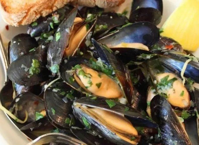 Cozze italiane allevate in mare contaminate da tossine saxitossina che causano paralisi: scattata allerta Rasff in Italia e nella UE.