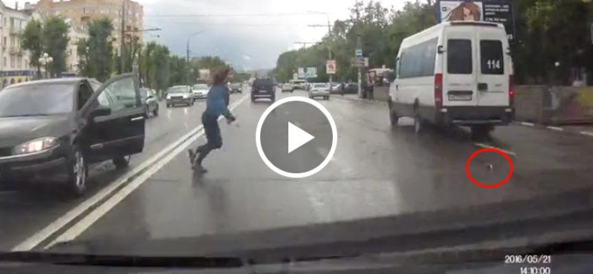 Il buon samaritano salva gattini da certa morte su una strada trafficata