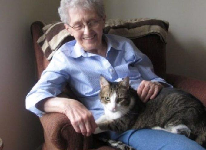 Una nonna e il gattino passano le ultime ore insieme, dopo anni di compagnia