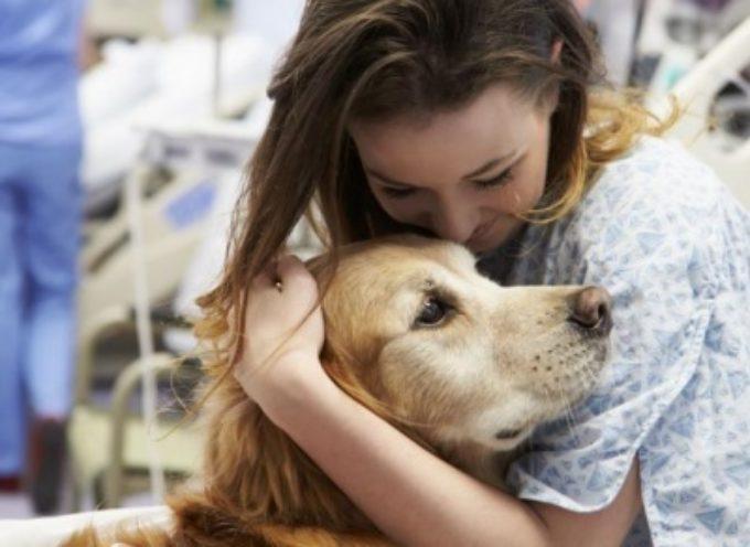 Formazione: un corso sulla Pet Therapy con Versilia Format, presentazione a Tonfano
