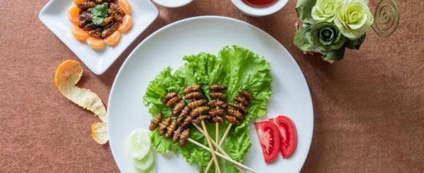 Mangiare insetti? IL business del futuro da 8miliardi!