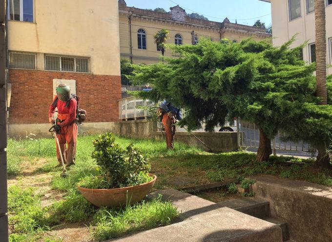 Manutenzioni: in corso su tutto il territorio comunale lo sfalcio dell'erba e la pulizia dei cigli stradali