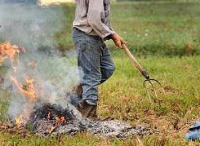 fino al prossimo 31 agosto vige il divieto assoluto di abbruciamento di residui vegetali agricoli e forestali su tutto il territorio regionale.