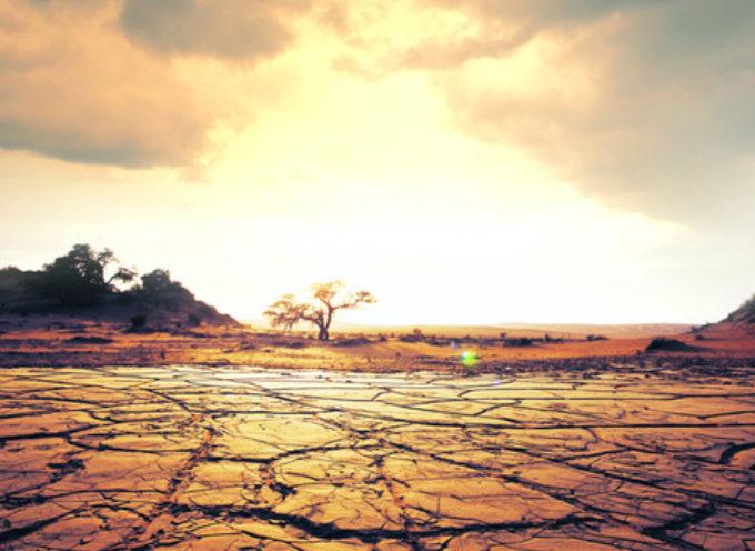 """""""Il cambiamento climaticominaccia di annullare gli ultimi 50 anni di progressi nello sviluppo, nella salute globale e nella riduzione della povertà"""