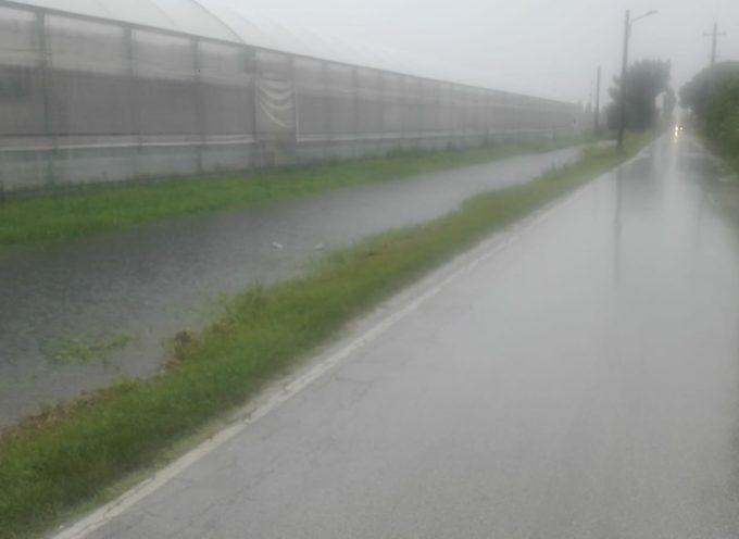 Maltempo: da stanotte sia Viareggio che Torre del Lago sono battute da una pioggia incessante.