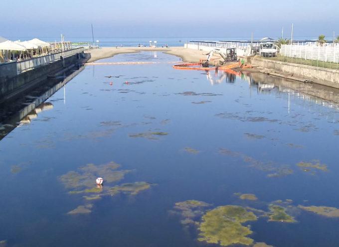 Consorzio di nuovo sulla Fossa dell'abate per togliere le alghe