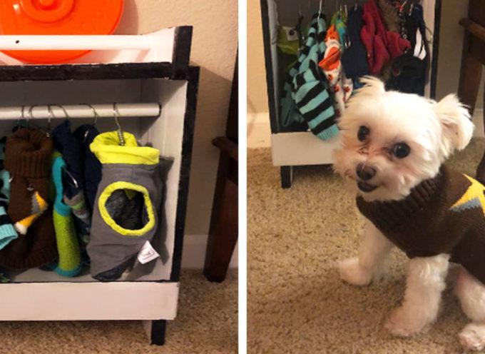 """Il cagnolino ama indossare vestiti così tanto che il suo """"nonno"""" ha costruito per lui un incredibile guardaroba"""