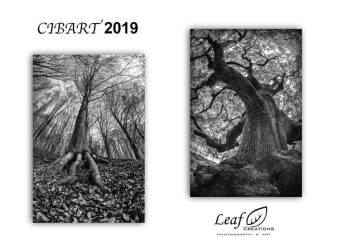 Cibart 2019 – Studio fotografico LEAF creations : Leonardo e i quattro elementi.