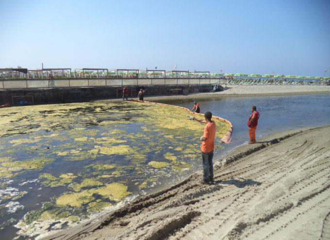Fossa dell'Abate, al via la rimozione delle alghe.