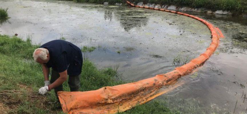 Maltempo a Viareggio la pioggia intensa fa alzare il Lago di Massaciuccoli