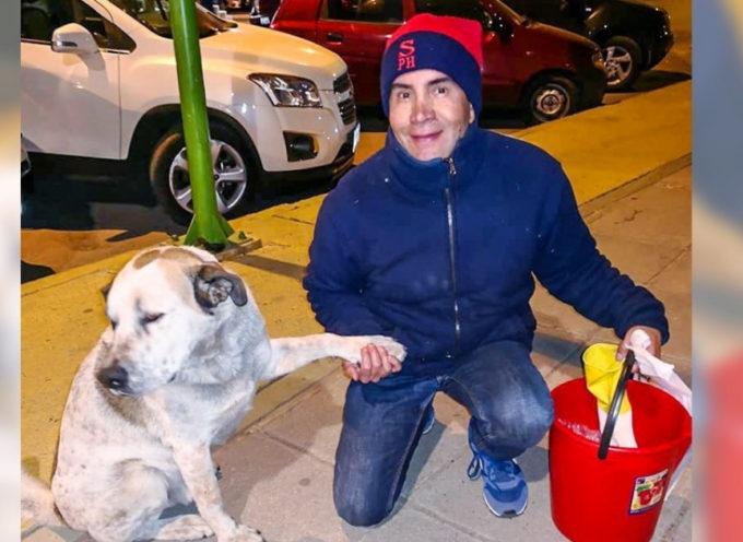 Va da città boliviana in città a sfamare i cani di strada