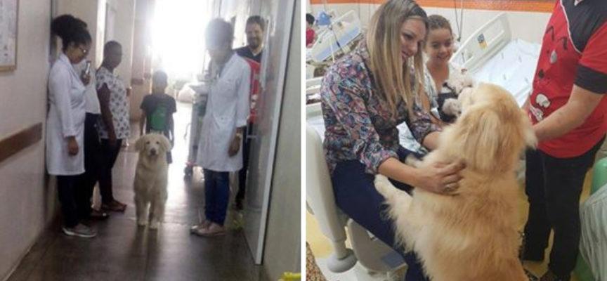 La terapia con i cani aiuta il trattamento dei bambini malati