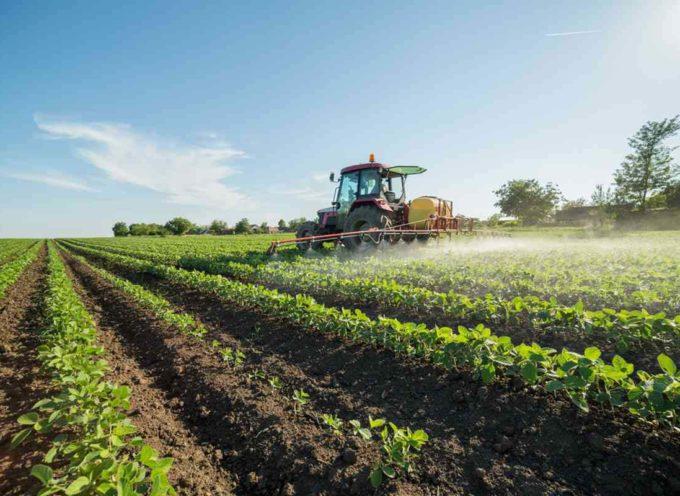Dopo il glifosato, un nuovo pericolo arriva dai fungicidi SDHI