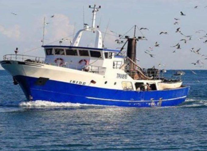 Guerra del pesce nel Mediterraneo: Grecia sequestra 9 tonnellate di gamberetti e merluzzo ai pescherecci italiani