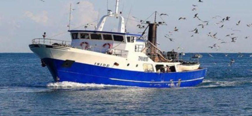 """Fermo pesca, Fantozzi (Fdi): """"Porterò le richieste dei pescatori in Regione"""""""