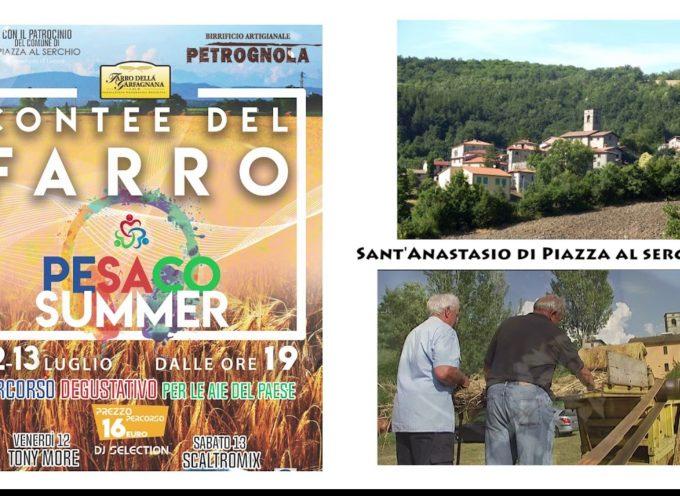 Le contee del farro sant'anastasio di piazza al serchio 12-13 luglio 2019
