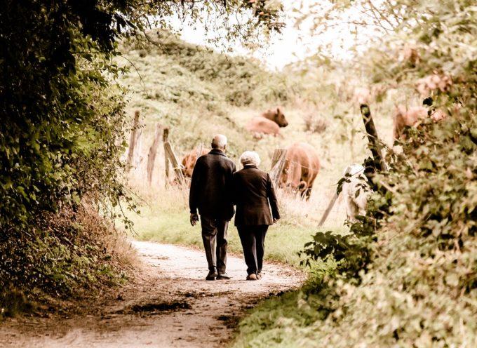 """""""A casa con voi"""" – una presenza amica per l'anziano grazie al progetto dell'AVO in collaborazione con Azienda USL Toscana nord ovest"""