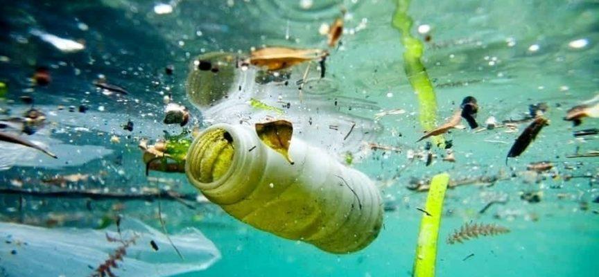Piu' PLASTICA che PESCI in mare entro il 2050