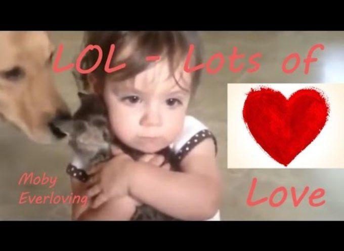 Gesti d'amore tra uomini e animali