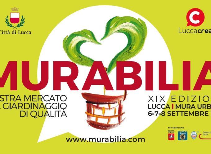 Murabilia, mostra mercato del giardinaggio di qualità, torna a Lucca il 6, 7 e 8 settembre.
