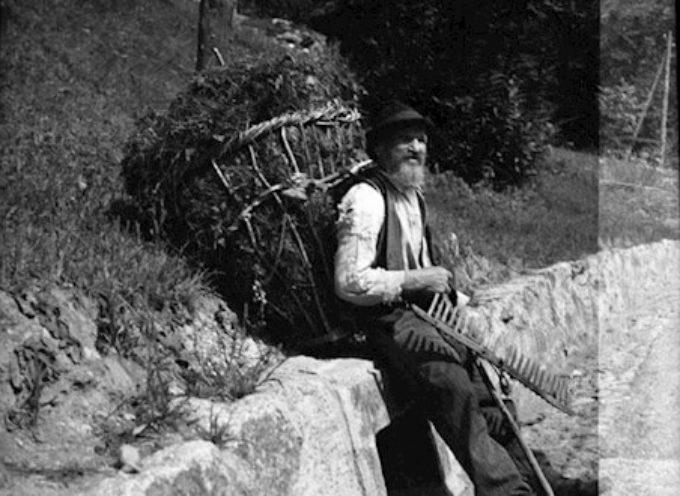 """"""" Fare l'erba e la foglia""""…era una occupazione che si sommava a tutti gli altri lavori quotidiani."""