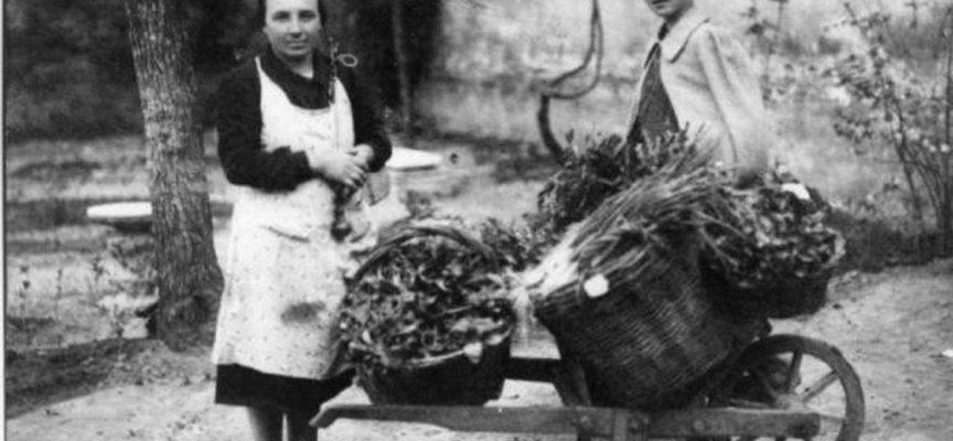 Al mercato, a vendere i prodotti dell'orto