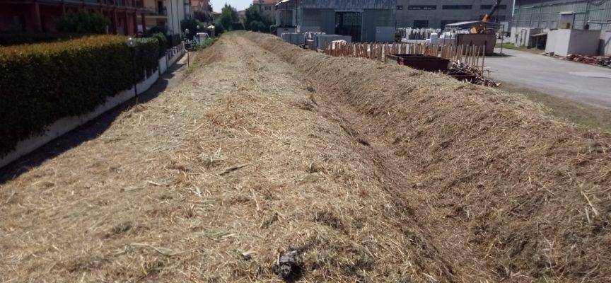 A Pietrasanta stiamo lavorando in zona ex Pretura sul rio della Colombetta
