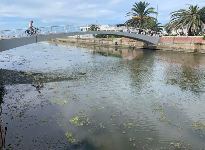 Via le alghe dalla Fossa dell'Abate: e tre!