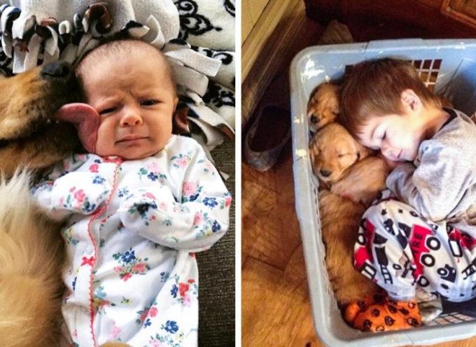 23 foto esilaranti che dimostrano che i bambini non possono vivere senza un animale domestico