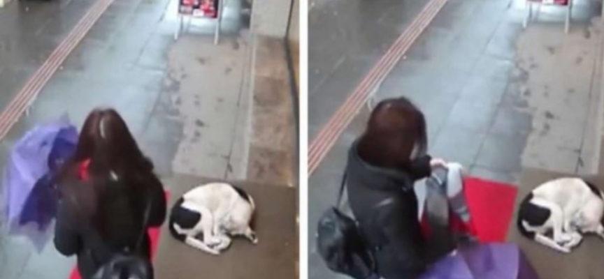 La donna si toglie la sciarpa per scaldare il cagnolino che rabbrividiva per strada
