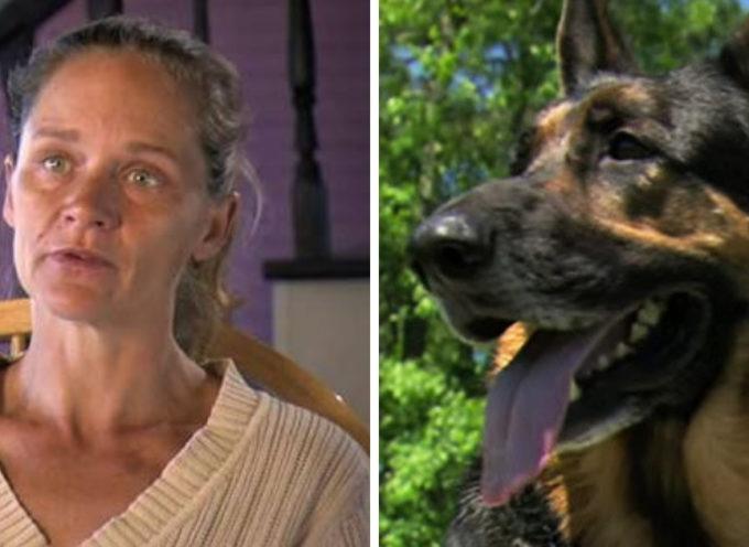 Cane salva la donna in un incidente d'auto ed è decorato come un eroe