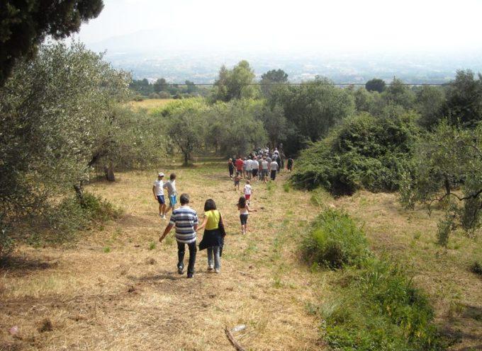 Sabato 24 agosto 'Escursione di San Bartolomeo' sulle Pizzorne