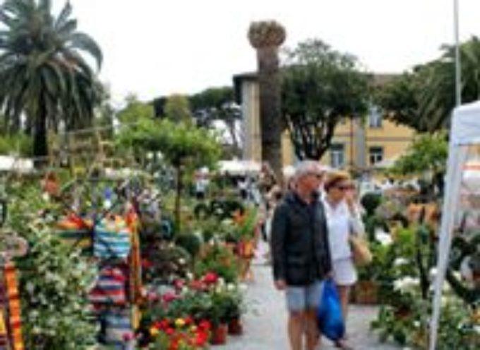 torna EvergreenForte in piazza Dante Alighieri a Forte dei Marmi.
