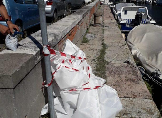 Cane annegato nel Burlamacca: aveva un secchio contenente cemento legato al guinzaglio