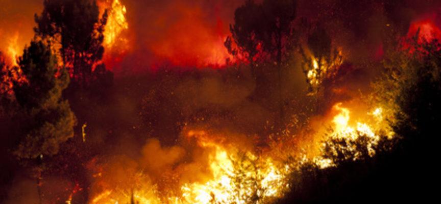 Stazzema – Incendio sulla cresta del Monte Croce