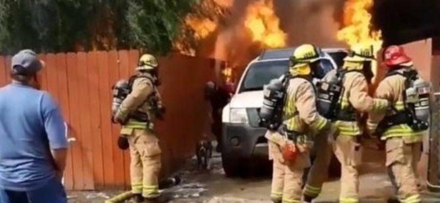 Ignora l'avvertimento dei pompieri e corre a casa in fiamme per salvare il suo cane