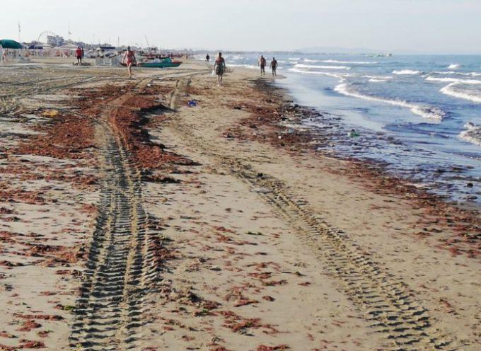 Lavarone sulla spiaggia a Marina di Pietrasanta