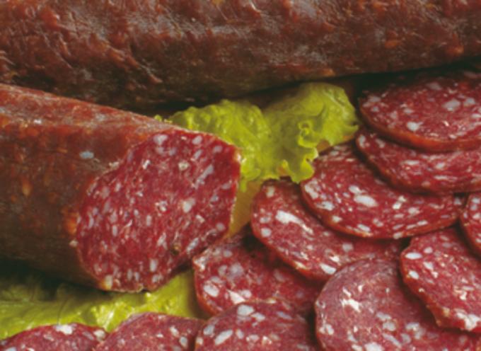 Presenza di corpi estranei nel Salame di cervo prodotto in Italia ritirato dal mercato europeo