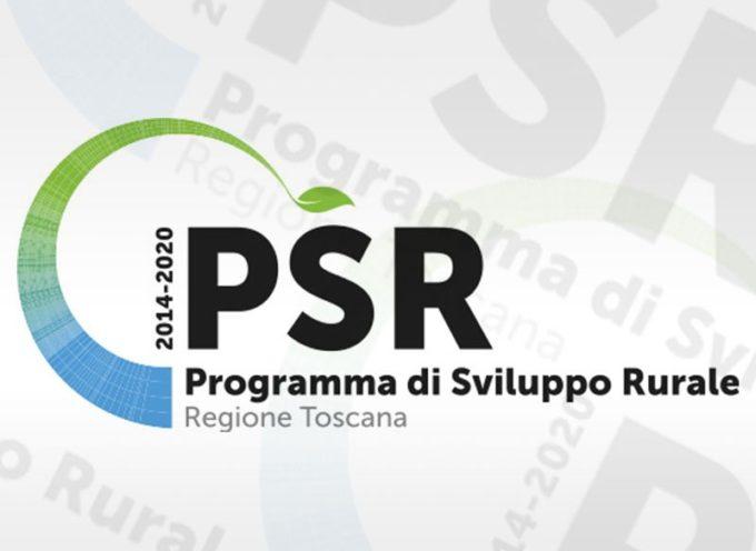 Agricoltura, oltre 18 milioni e mezzo di euro per finanziare 49 progetti del PSR